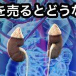 腎臓を売るとどうなる?相場や体調への影響は?